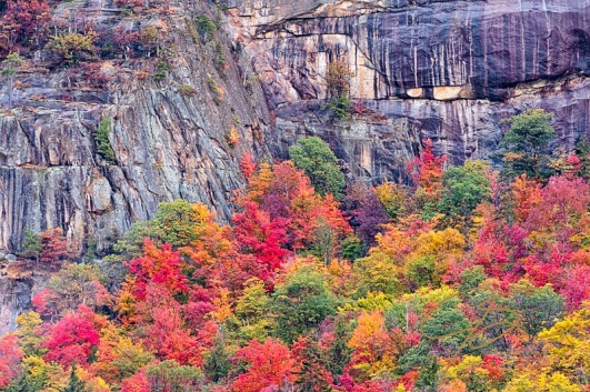 Fall foliage and granite ledge along the Kancamagus Highway