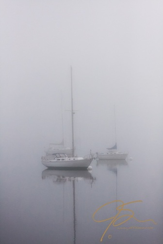 A small group of sail boats moored in Great Bay near Adams Point, Durham, NH. The boats seem ghostly in the heavy fog.