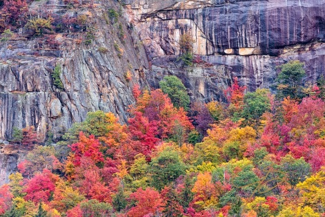 vibrant falls foliage lines the base of these granite cliffs found along the Kancamagus Highway in the White Mountain National Forest.