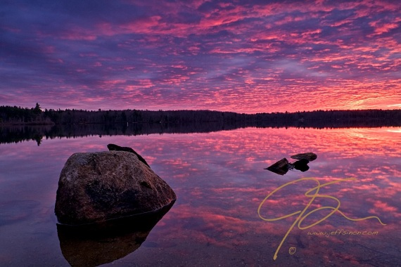 Dramatic, firey, sunrise over Baxter Lake in Farmington, NH. The underglow from the rising sun give the cloud filled sky the appearance it is ablaze in purple, pink, and orange fire. All this drama is beautifully refelcted in the glass smooth water. In the lower left of the image, in water so shallow that the sandy bottom can be seen through the mirrored surface of the lake.