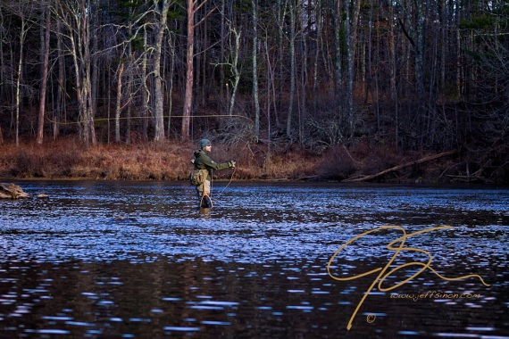 A fly fisherman standing in the middle of the Cocheco River, casts a dry fly.