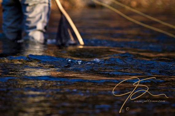 The legs of a fly fisherman standing in the ripples of a stream. Landing net and line, being gently pulled by the current.