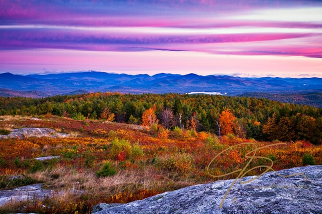 Looking north from the exposed granite summit of Foss Mountain in Eaton, NH, the vibrant Autumn colors show a beautiful palette of red, orange, and golden yellow foliage painting the mountain sides. Streaming pink and purple cotton candy clouds top the scene. Mount Washington and the Presidential range can be seen in the distance towards the upper left of the scene