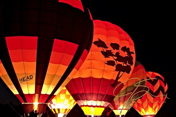 Five hot air balloons, at the Pittsfield, NH Hot Air Balloon Rally, glow from within at the Rallies Night Glow. The balloon pilots light off the burners in the evening, after the sun goes down, to give the balloons a beautiful internal glow.