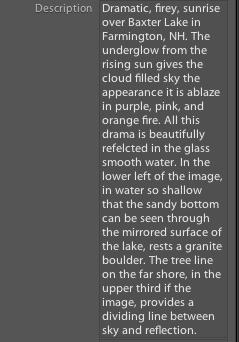 screenshot_description