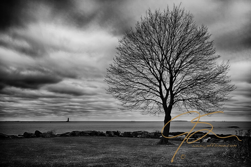 Whaleback and tree black and white hdr 2994 jeff sinon photography