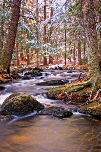 A boulder strewn stream through the forest. A fresh dusting of the seasons first snow clings the overhanging evergreen boughs.