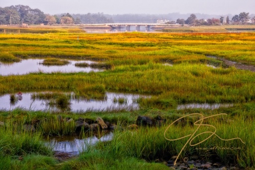 Overlooking the salt marsh near Odiorne Point State park, in the distance the white wooden bridge on route 1 is seen through the early morning fog