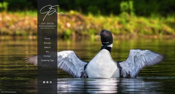 new website, jeff sinon photography, loon