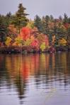 fiery autumn shore on baxter lake, nh