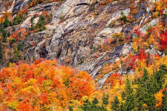Color In The Notch. Crawford Notch, NH