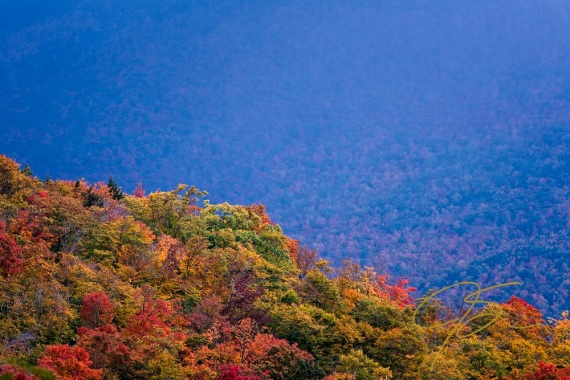 Color On The Ridge