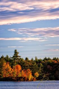 Autumn Morning. Baxter Lake, NH