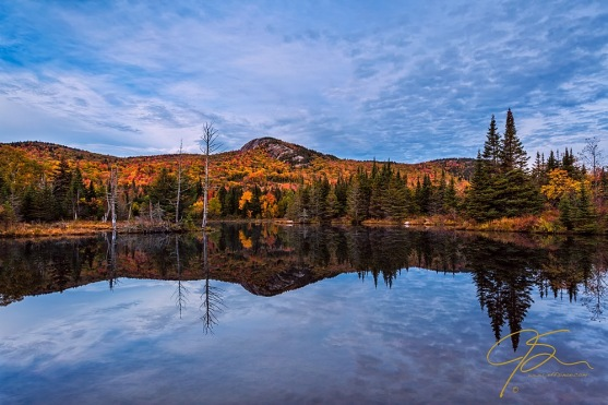 Beautiful autumn color and a mirror reflection on Wildlife Pond.