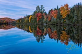 Deep green evergreens interspersed with vibrant red, yellow, and gold autumn foliage line the far bank of the Androscoggin River along the 13 Mile Woods section of NH route 16. The brilliant color reflecting on the glassy smooth surface of the river.