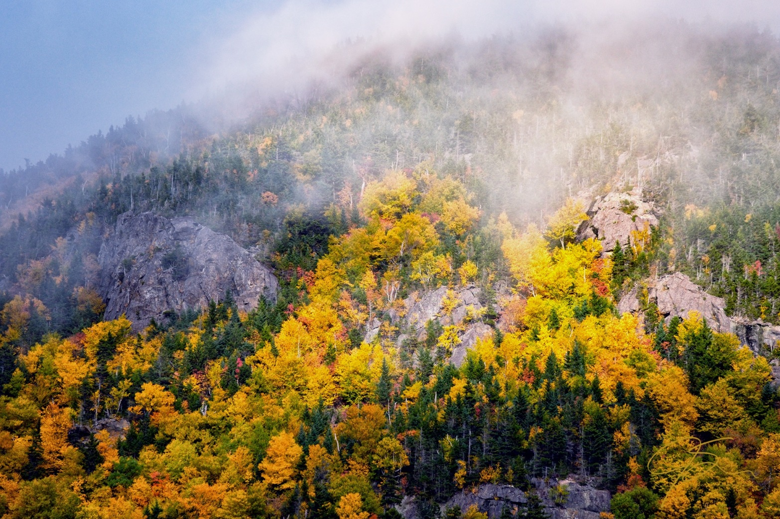Autumn Light In The Misty Mountains