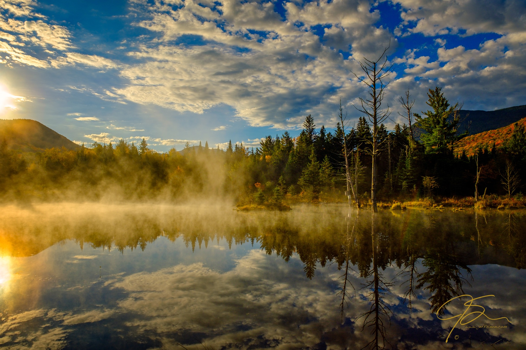 Morning Mist, Wildlife Pond