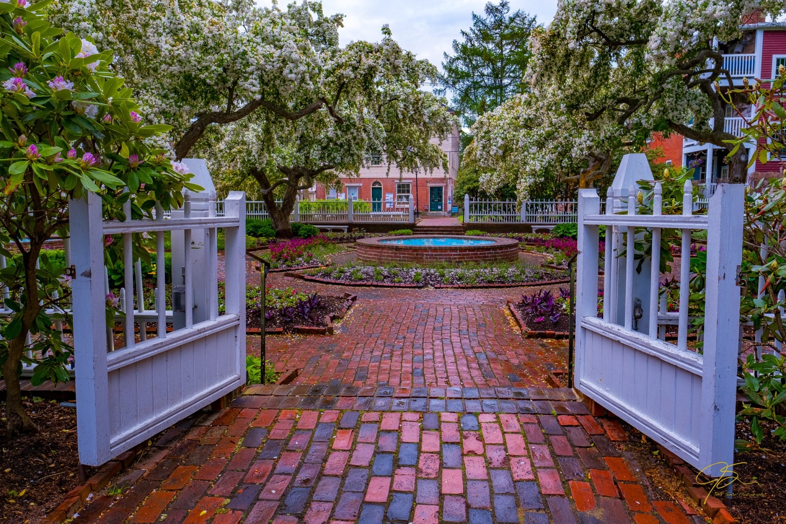 white gate into the garden, brick paths, cherry blossoms, and fountains