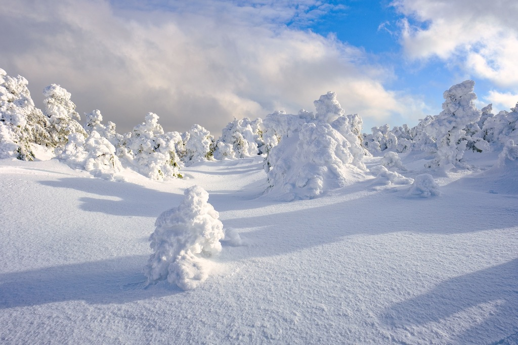rime ice and shadow high in the mountains