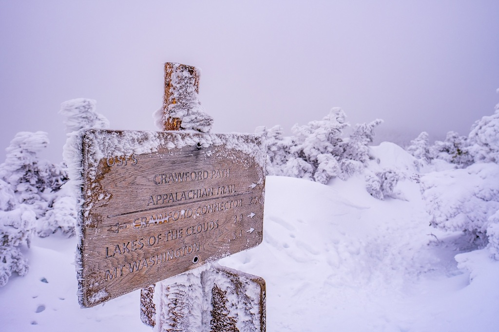 Crawford Path trail sign coated in rime ice.